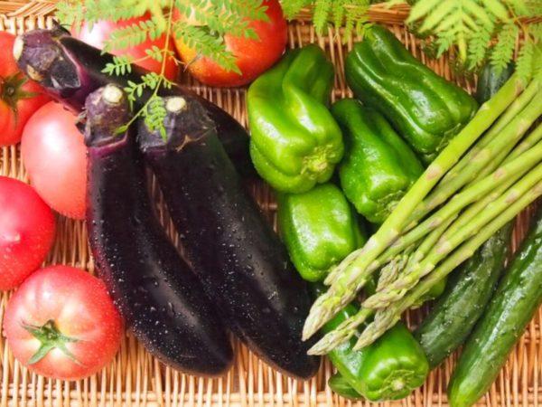 カラフル夏野菜