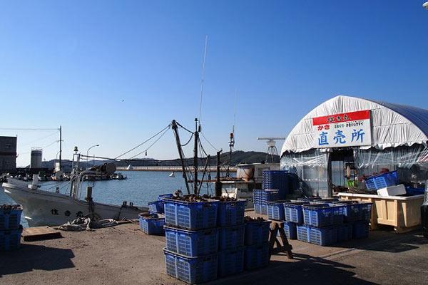 糸島 漁港 牡蠣